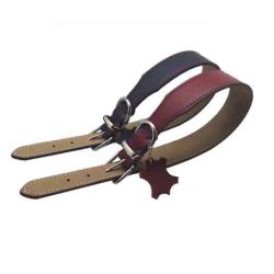 Collar Piel Alberto Color Rojo para Perro (1)
