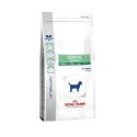 Dental Special Small Dog DSD 25 (1)