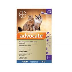 Advocate para Gatos 4-8 kg (1)