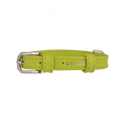 Collar Glamour en Piel Verde para Perro (6)