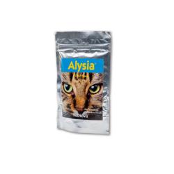 Alisya para Gato