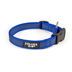 Collar Engomado Azul para Perro