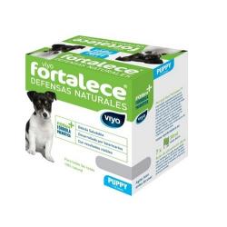 Viyo Fortalece Puppy (2-12 Meses) (1)