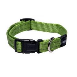Collar Nylon Verde Lima para Perro (1)