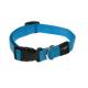 Collar Nylon Azul Turquesa para Perro (1)