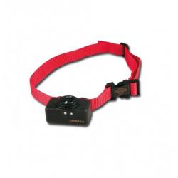 Collar Antiladridos Basico para Perro (1)