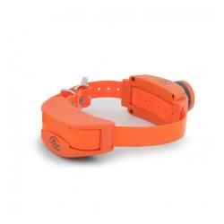 Collar Adicional Adiestramiento Remoto para Perro (1)