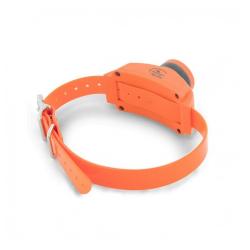 Collar Adicional Beeper para Perro (1)