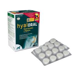 farmadiet-Condroprotector Hyaloral Razas grandes (1)