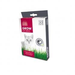 Hierva Gatera Grow para Gato (6)