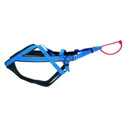Arnés Racing Azul para Perro (4)