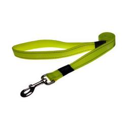 Correa Nylon Amarillo para Perros (6)