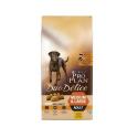 Duo Delice Pollo (12)