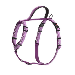 Harnes Halti Walking Color Lila para Perro (1)