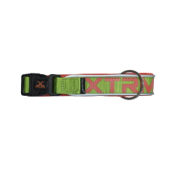 Collar X-TRM Nylon para Perro Color Verde Neón (6)