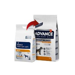 Weight Balance Canine (12)
