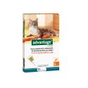 Ecuphar-Advantage 40 Gato 1-4 kg (1)