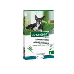 Advantage Pipetas Antipulgas Perros de 0-4 Kg (6)