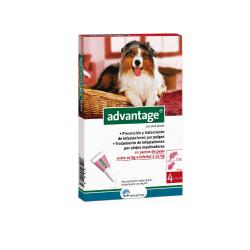 Advantage Pipetas Antipulgas Perros de 10-25 Kg (6)
