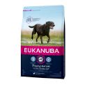 Eukanuba-Senior Razas Grandes con Pollo (1)