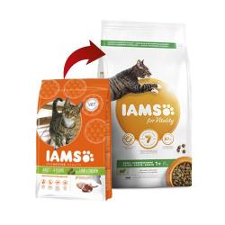 Iams-Adulto Proactive Cordero (1)