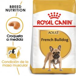 Royal Canin-Bulldog Francés Adulto (1)
