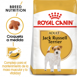 Royal Canin-Jack Russell Adulto (1)
