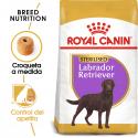 Royal Canin-Labrador Retriever Sterilised (1)