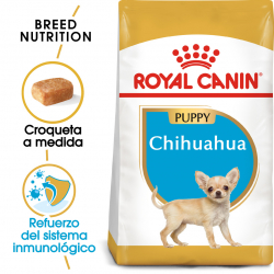 Royal Canin-Chihuahua Cachorro (1)