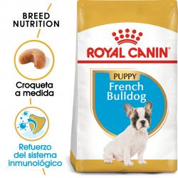 Royal Canin-Bulldog Frances Cachorro (1)