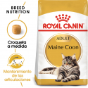 Royal Canin-Maine Coon Adult (1)