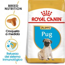 Royal Canin-Carlino Cachorro (1)