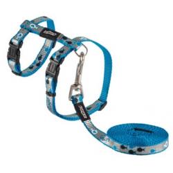 Arnés y Correa Nylon Reflectante Azul para Gato (1)