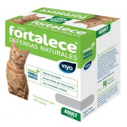 Viyo Fortalece Gato Adulto (1-7 Años) (1)