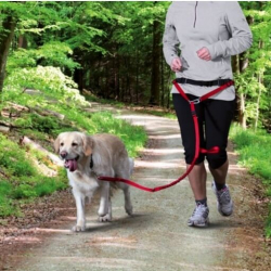 Cinturón Acolchado Canicross para Perro (1)