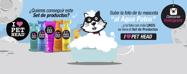 Concurso_Pet_Head_bañar_a_tu_perro
