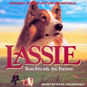 lassie-es-un-perro-pastor-escoces-de-pelo-largo