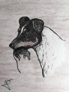 bodeguero andaluz cazador de ratas