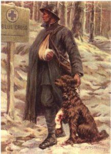 pastor-de-brie-guerra-mundial