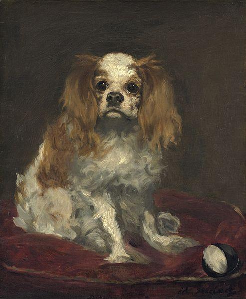 Edouard Manet, King Charles Spaniel,