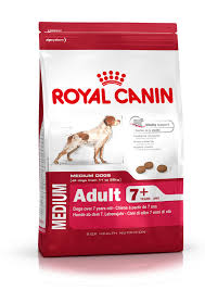 adult 7+ royal canin