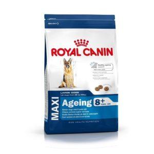 royal-canin-maxi-adult-8