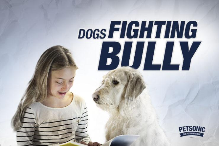 fight bulliyng