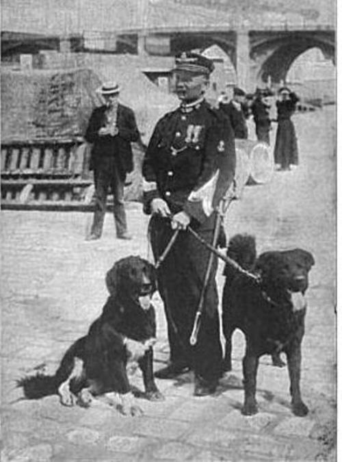 paris-river-brigade-dogs