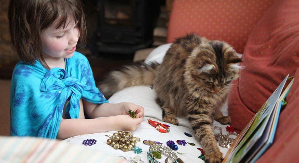 terapia gato